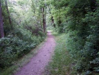 Hiking Trail Extension Trail 5 Lake Redman